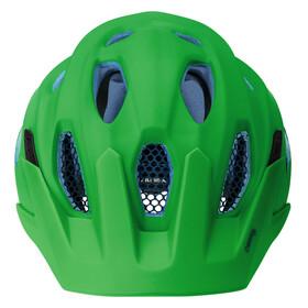 Alpina Carapax Jr. Helmet green-blue
